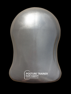 Photo and link to Posture Trainer website